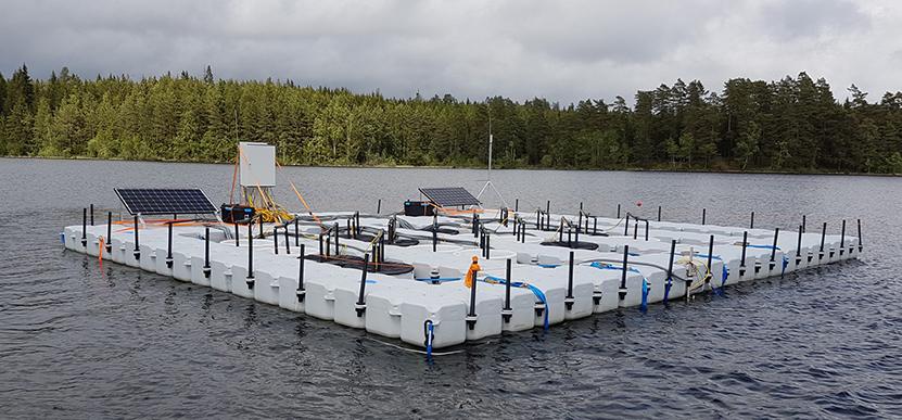 Mesokosmer på sjön Bolmen. Foto: SITES